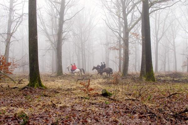 Photo richard kriegel
