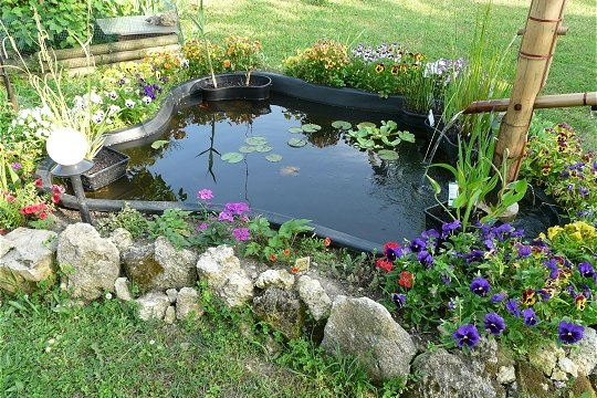 Jardin d co jardin les plus beaux bassins for Amenager un bassin a poisson