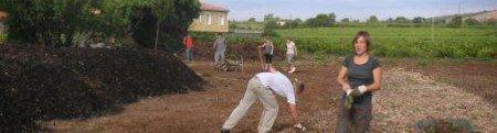 forum frontignan, compost aux jardins familiaux