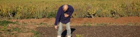 forum citoyen, semailles aux jardins familiaux de Frontignan