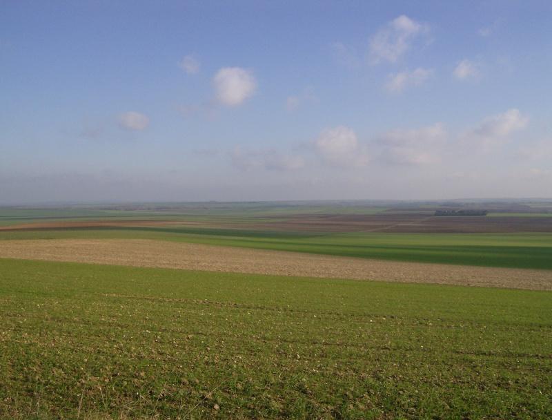 2006-121.jpg