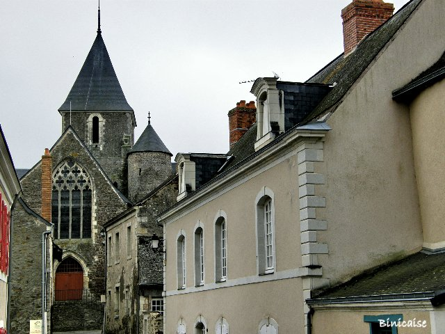 St Denis d'Anjou 2/2 dans Pays de Loire et Touraine. p9231915