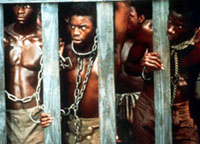the capture of kunta kinte Haley describes kunta's strict muslim upbringing, the rigors of the manhood training he undergoes, and the proud origins of the kinte name in 1765, kunta is taken into manhood training one day that year, he is sent to hunt a bird without a weapon.