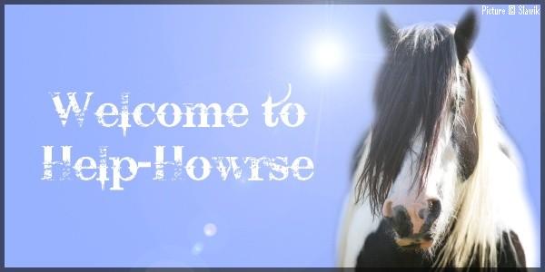 Help Howrse