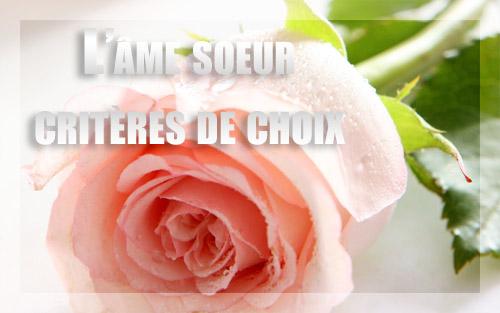 http://i22.servimg.com/u/f22/12/82/90/26/roses_10.jpg