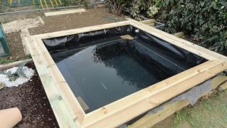 nature bassin la mare et le bassin de jardin naturel afficher le sujet mon petit bassin. Black Bedroom Furniture Sets. Home Design Ideas