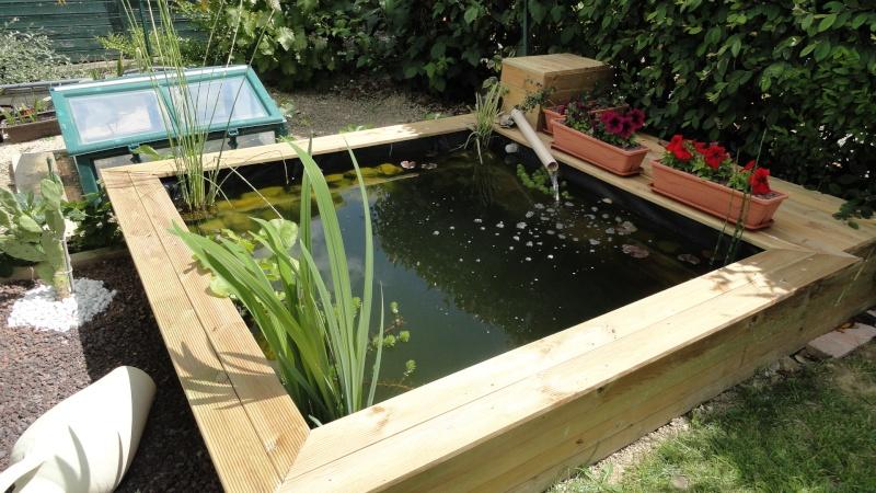 le forum des fous de palmiers construction de mon petit bassin. Black Bedroom Furniture Sets. Home Design Ideas