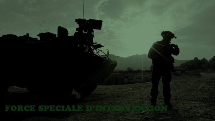 Force Spéciale d'Intervention