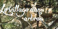 Le village dans les arbres