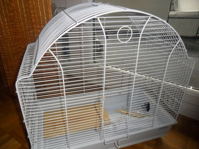 cage pour hamster nain. Black Bedroom Furniture Sets. Home Design Ideas