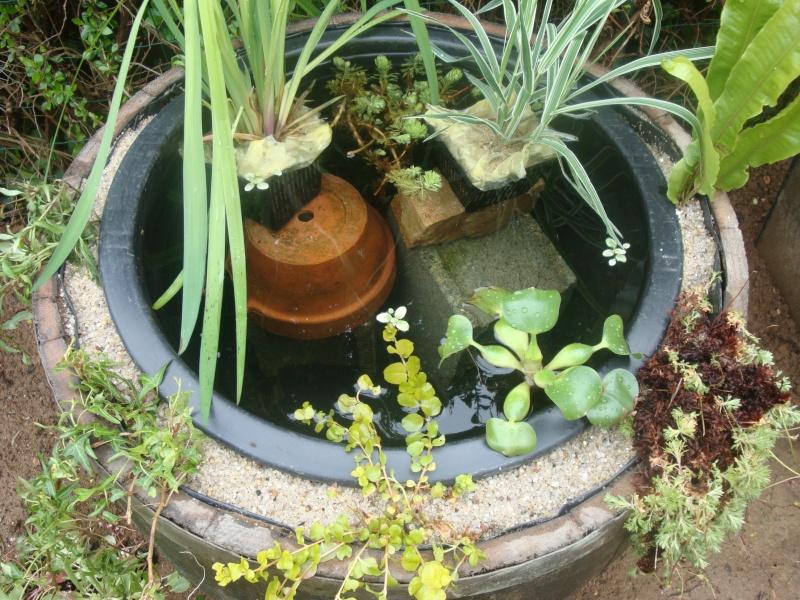 Tonneau transform en petit bassin - Bassin dans un tonneau marseille ...
