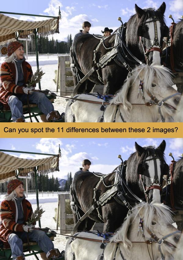 8 jeux acteurs et chevaux gratuits heartland cbc differences free horse games amber marshall - Chevaux gratuits ...