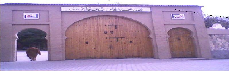 منتدى ثانوية محمد الخامس للتعليم الأصيل  بتارودانت